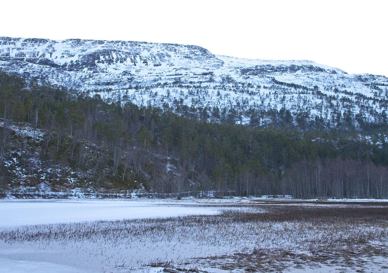 170203d-Honnstadvatnet.jpg