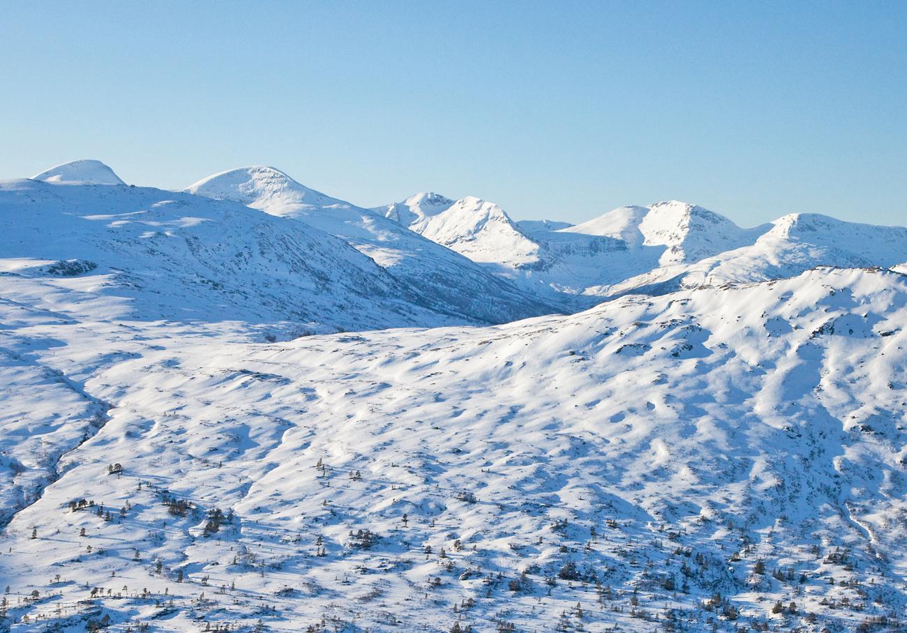 170207d-fjellrekke.jpg