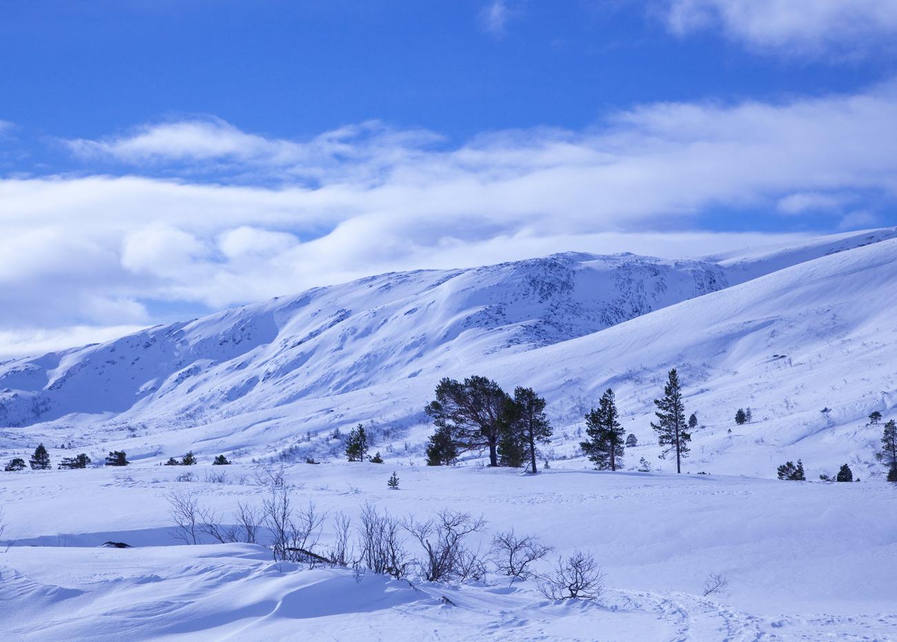 170321d-fjell.jpg