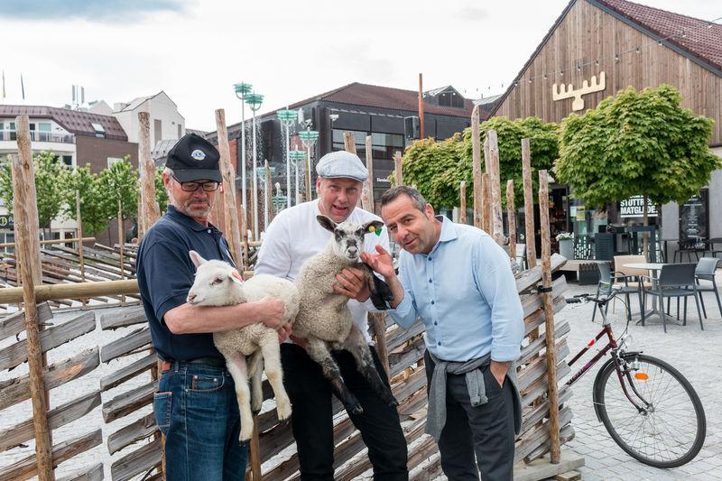 Gruppebilde med lam på torget