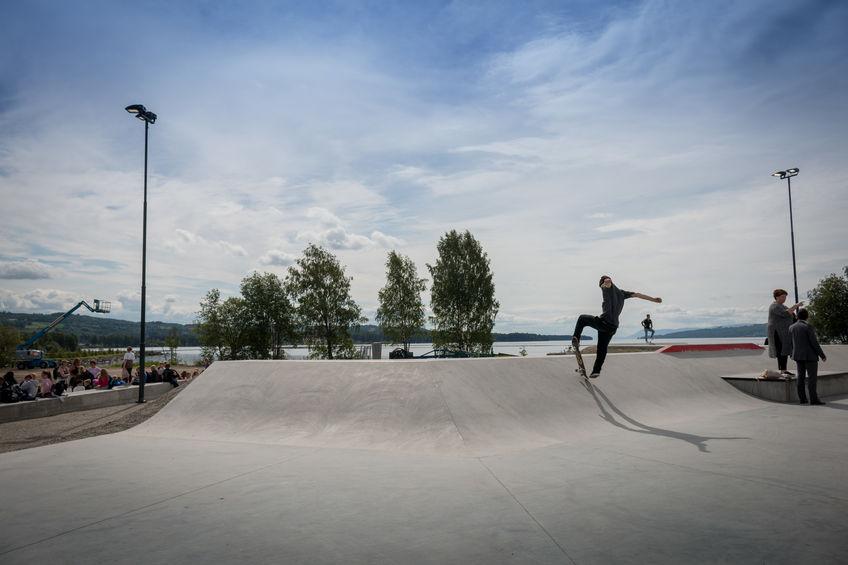 Skater i parken