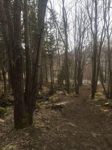 Friområde og natursti i Kustadlia
