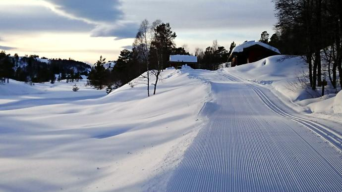 Tørsåsløa 9.febr.2018.jpg