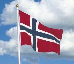 Norske flagg[1]