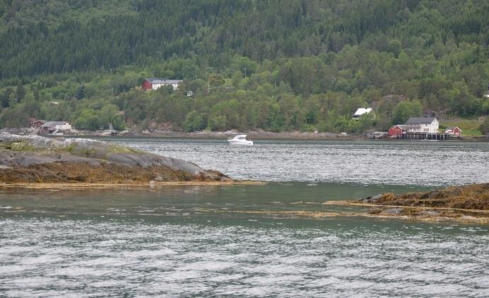 Fjorddag28.jpg