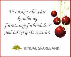 Banner_rindalsparebank250x200