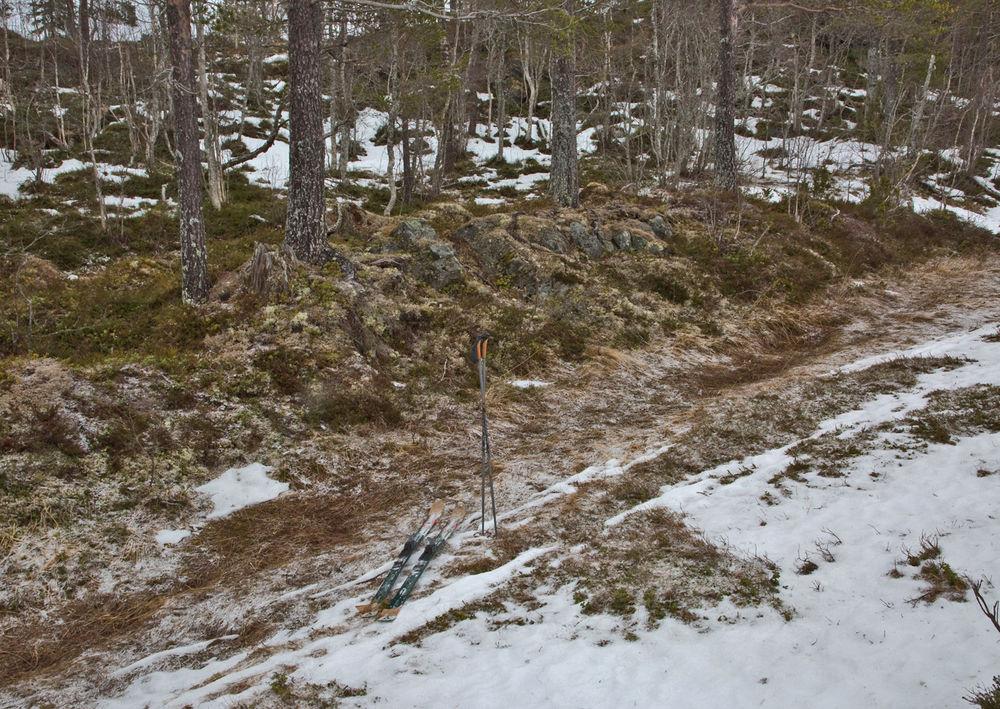 190107a-ski
