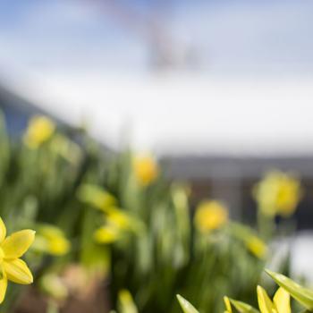 Tips til påskeaktiviteter i Ringsaker