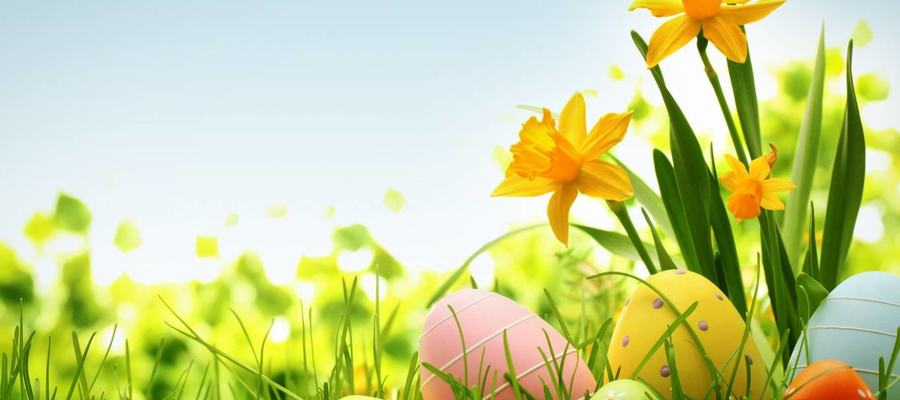 free-easter-images_54