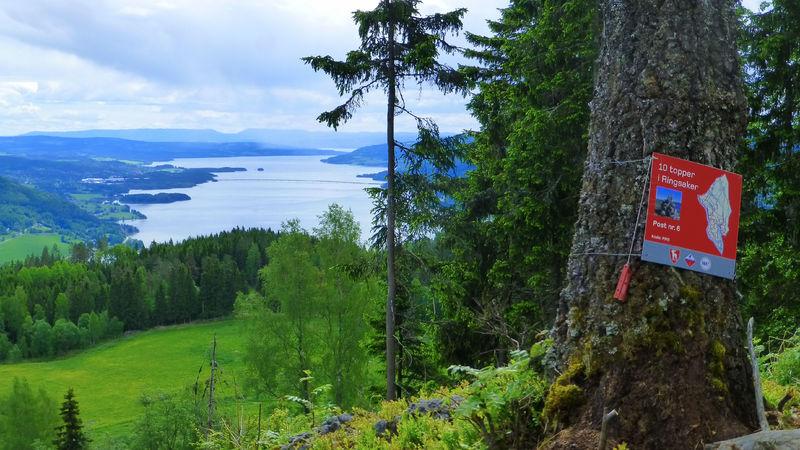 Utsikt fra topp i Ringsaker