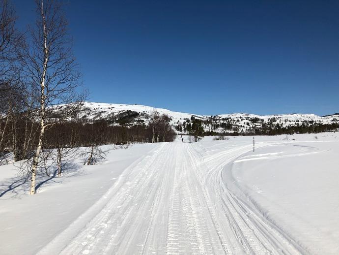 Fossdalen 14.04.JPG