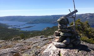 Håvenuten_Elin_Fjalestad