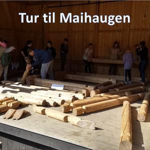 Tur til Maihaugen - INGRESS