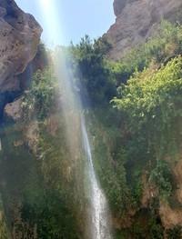 Ein Gedi,Ein Gedi Nature Reserve,israel