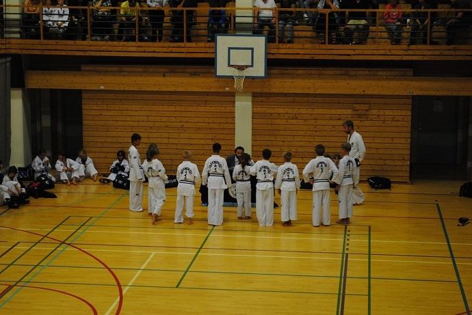 taekwondo samling.jpg