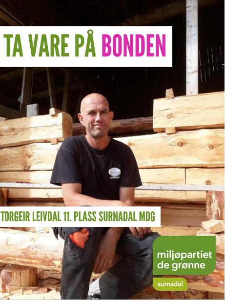 Torgeir Leivdal.PNG