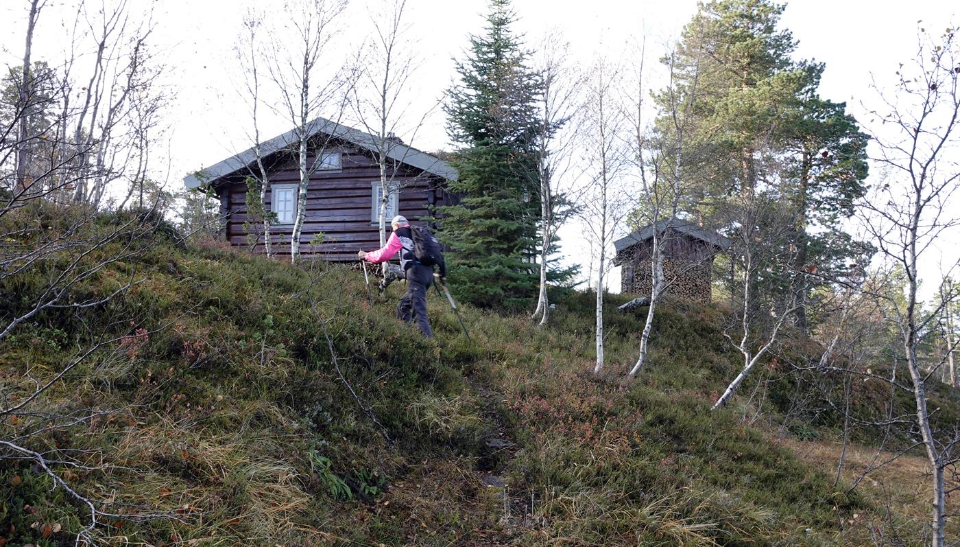 191017b-hytte.jpg