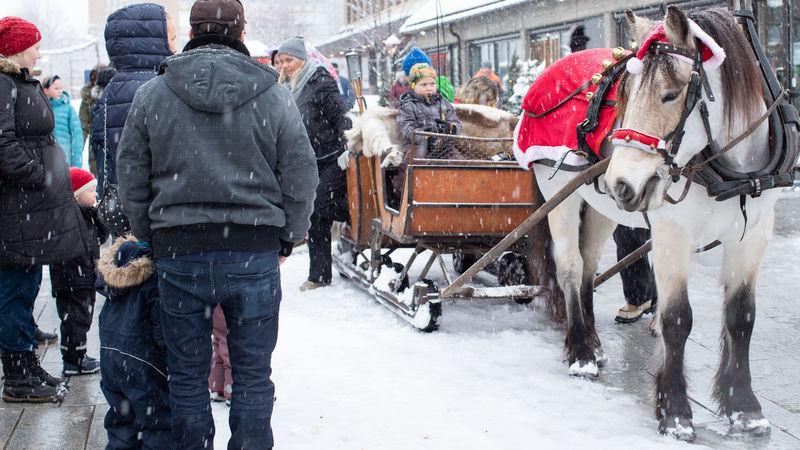 Hesteskyss i Ringsaker