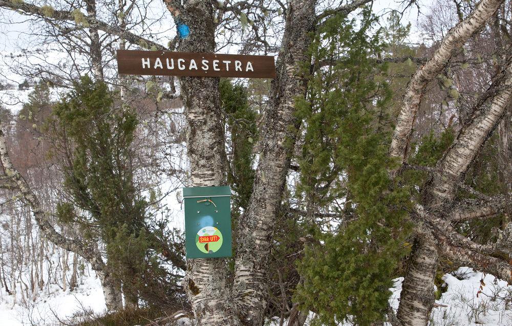191125a-Haugasetra