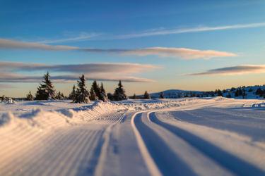 Foto av skiløyper