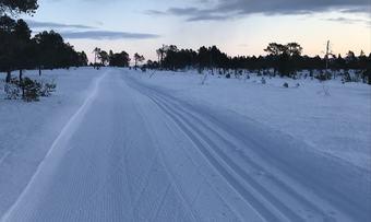 Nordmarka skiløype innsendt