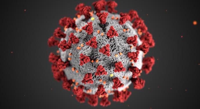 1500 koronavirus-tema SKAL KREDITERES Foto CDC, Alissa Eckert High resolution