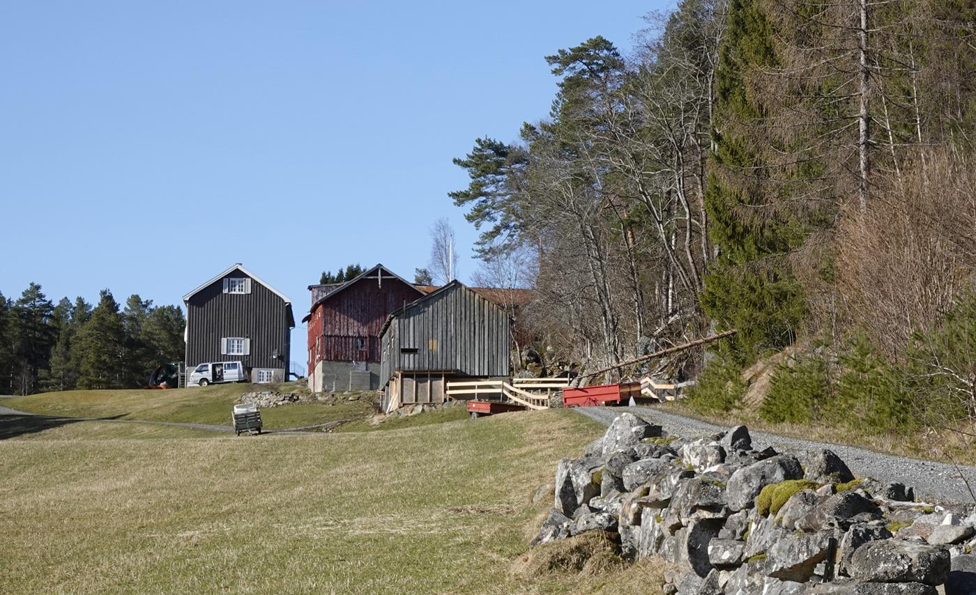 200321p-Bøkleppen.jpg