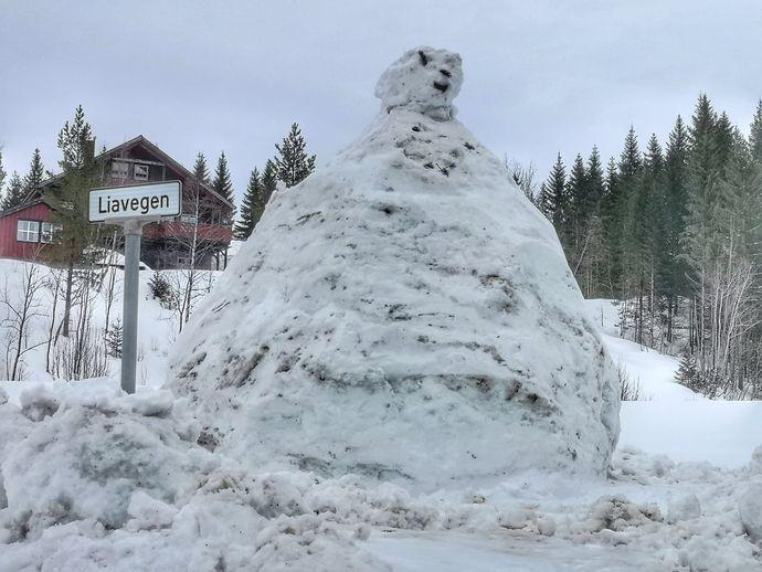 Bilde den store snømannen