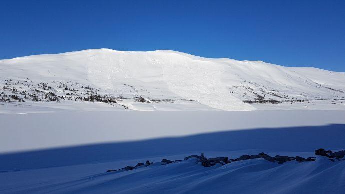 Snøskred uke 16, 2020, sørvest for Gråhaugen fjellstue. Gråsjøen Surnadal kommune.jpg