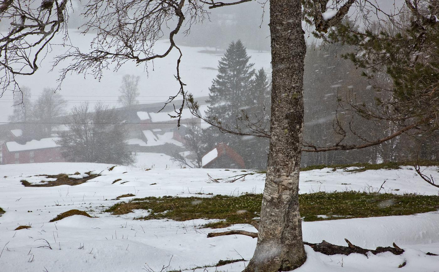 200513l-snøvær.jpg
