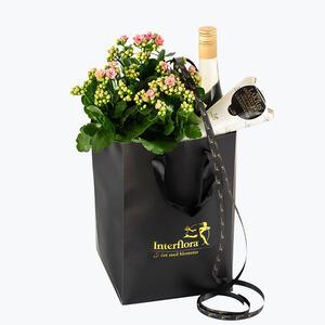 999906_blomster_plante