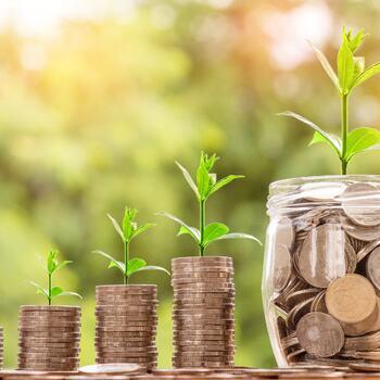 Foto: Pixabay, penger som gror