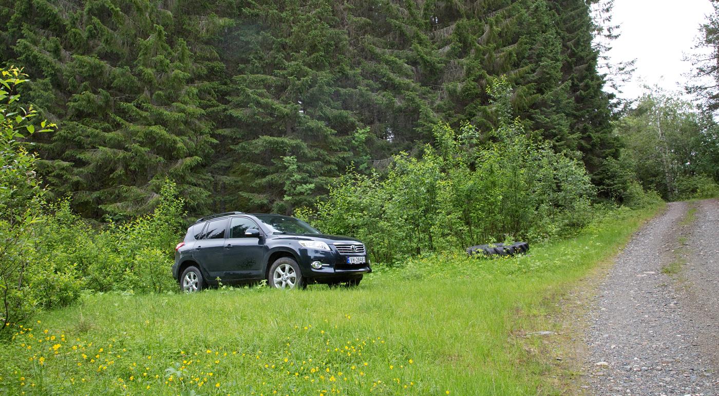 200707b-bil.jpg
