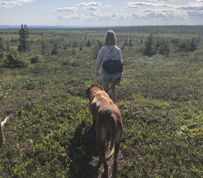 Jente som går med hund i bånd