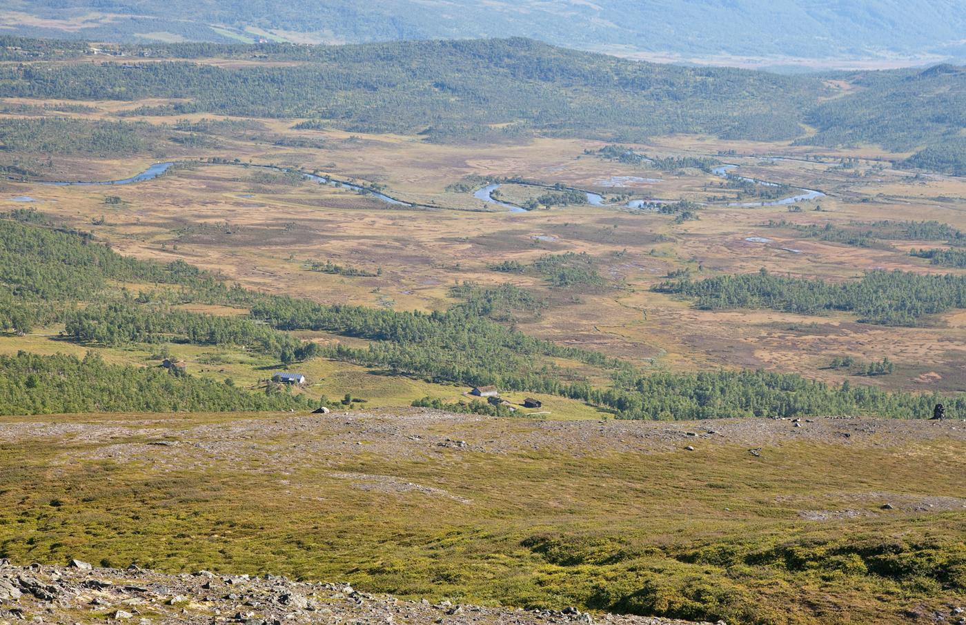 200801q-Minnilldalsmyran.jpg
