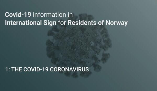 1-The-Covid-19-Coronavirus-0001-1024x576