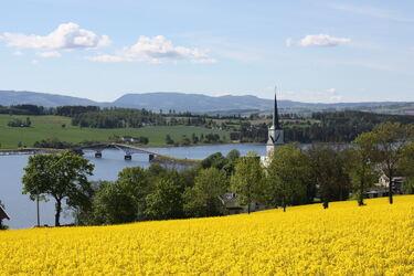 Fra kulturlandskapet på Nes og Helgøya