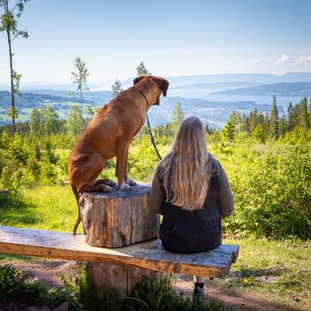 Oppdag nye turmål i Ringsaker i sommer!