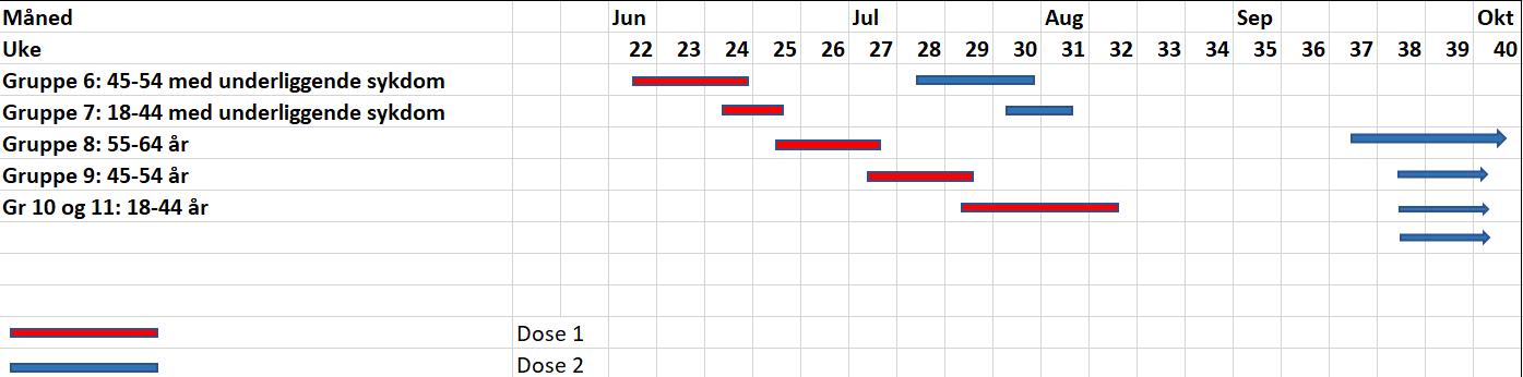 Vaksinasjonsplan - tabell