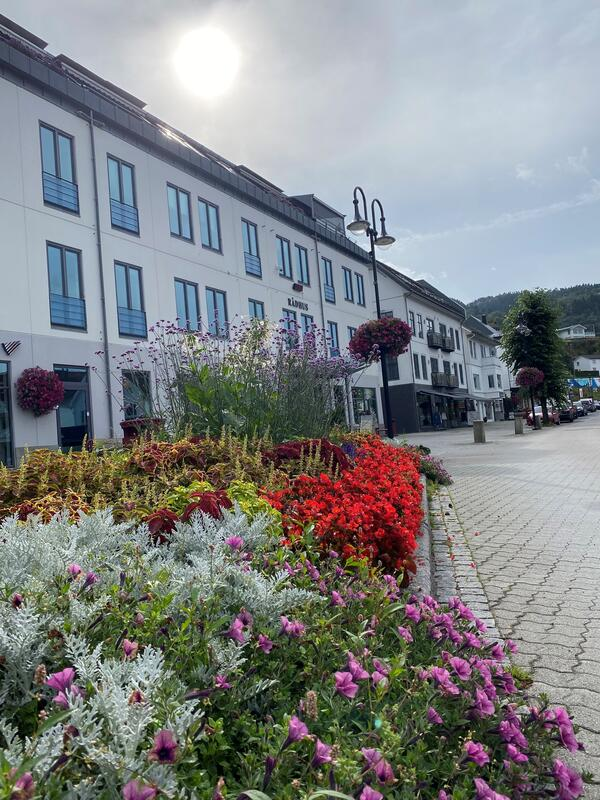 Kvinesdal rådhus og blomsterbed