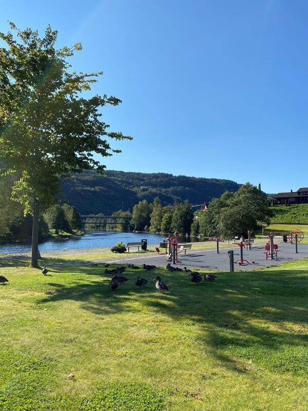 Kvinaparken en høstdag