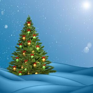 christmas-wishes-holidays-merry-christmas-design-christmas-tree-christmas-decoration-spruce-sky-fir-tree-pine-family-conifer-christmas-ornament-evergreen-winter-computer-wallpaper-pine-holiday-decor-1451919